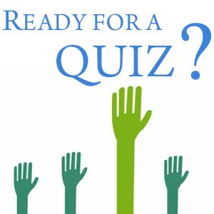 Take this quiz to test your knowledge regarding debt and debt relief solutions
